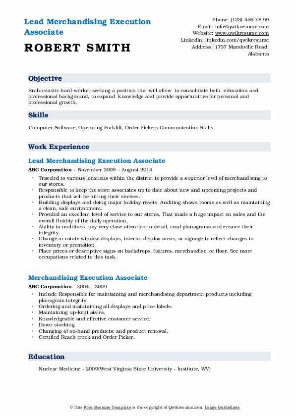 Lead Merchandising Execution Associate Resume Template