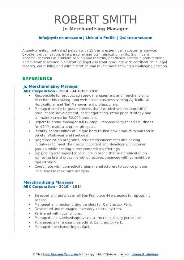 Jr. Merchandising Manager Resume Format