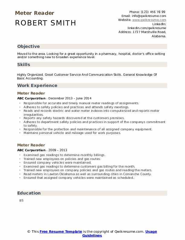 Meter Reader Resume example