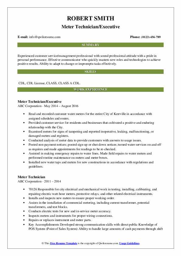 Meter Technician/Executive Resume Format