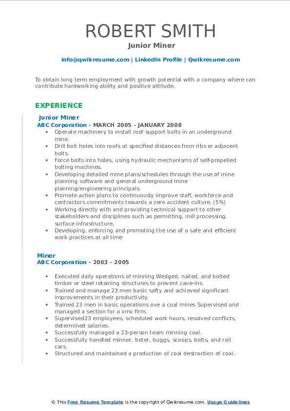 Junior Miner Resume Example