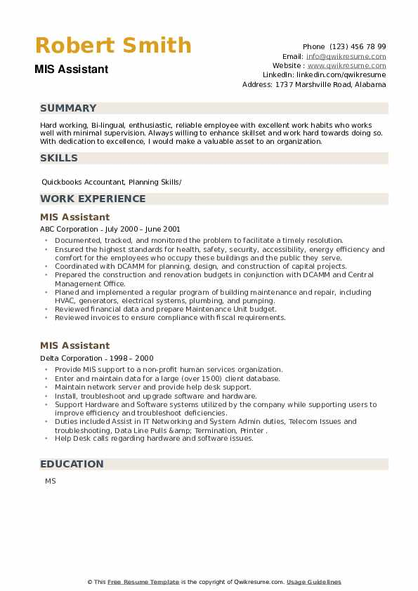 MIS Assistant Resume example