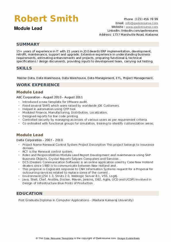 Module Lead Resume example