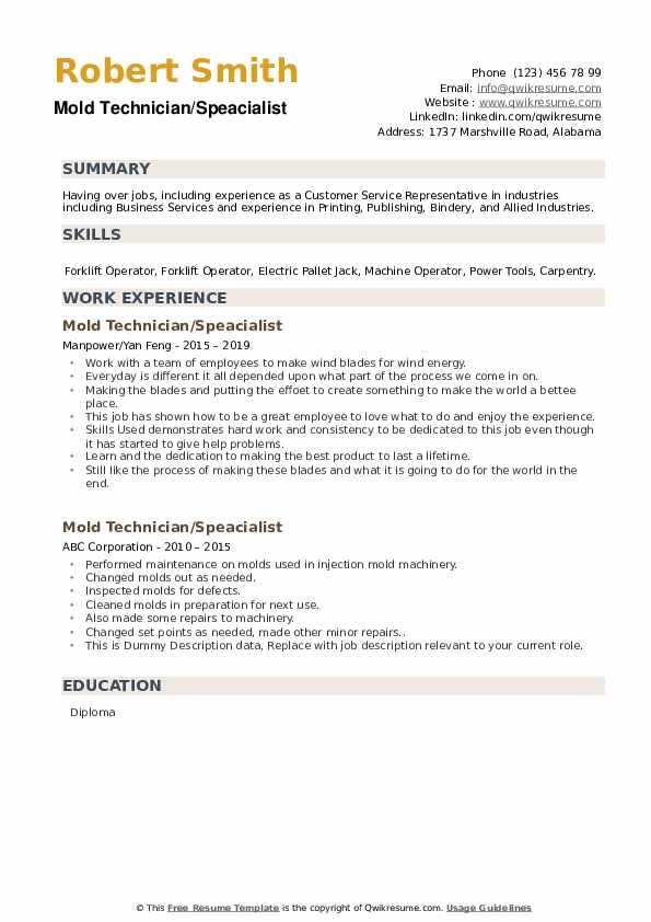 Mold Technician Resume example