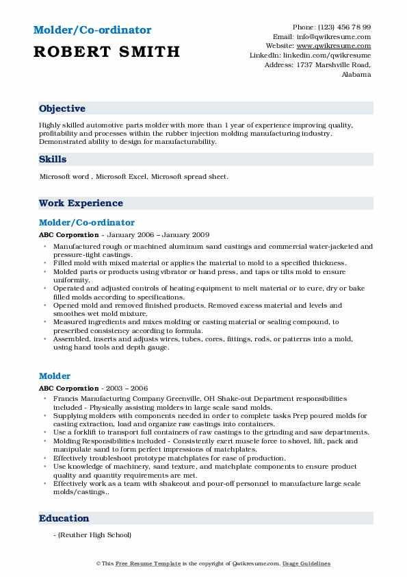 Molder/Co-ordinator Resume Example