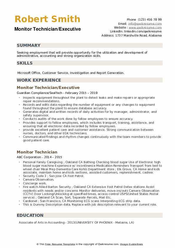 Monitor Technician/Executive Resume Model