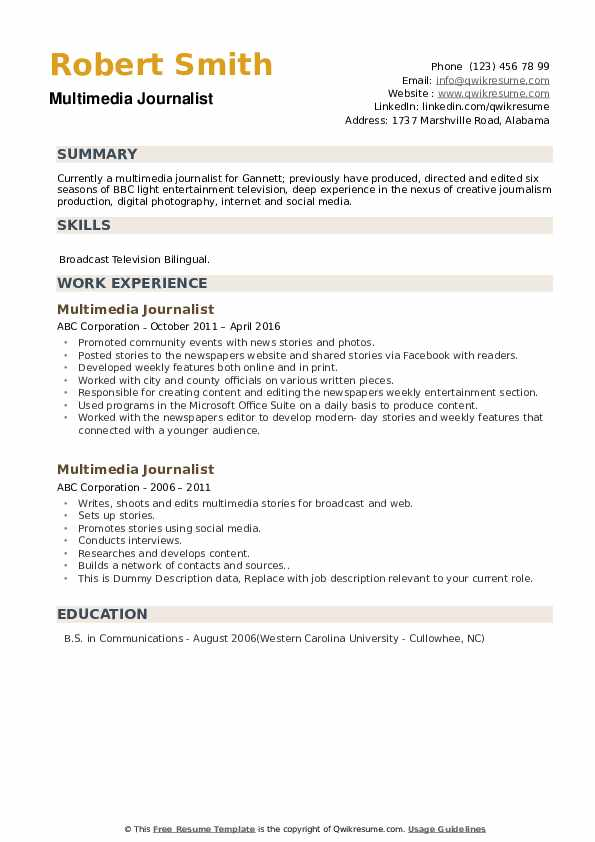 Multimedia Journalist Resume example