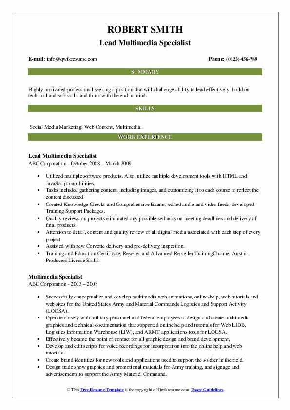 Lead Multimedia Specialist Resume Example