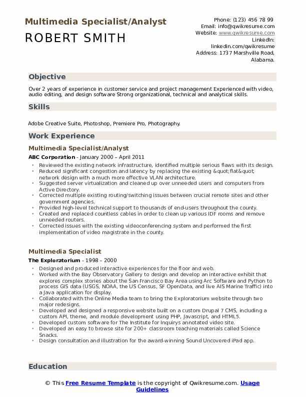 Multimedia Specialist/Analyst Resume Example