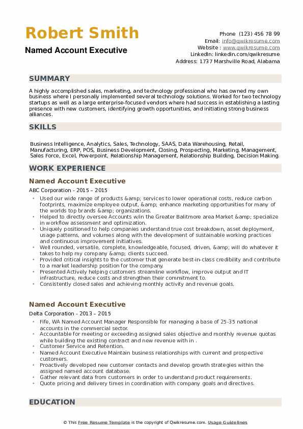 Named Account Executive Resume example