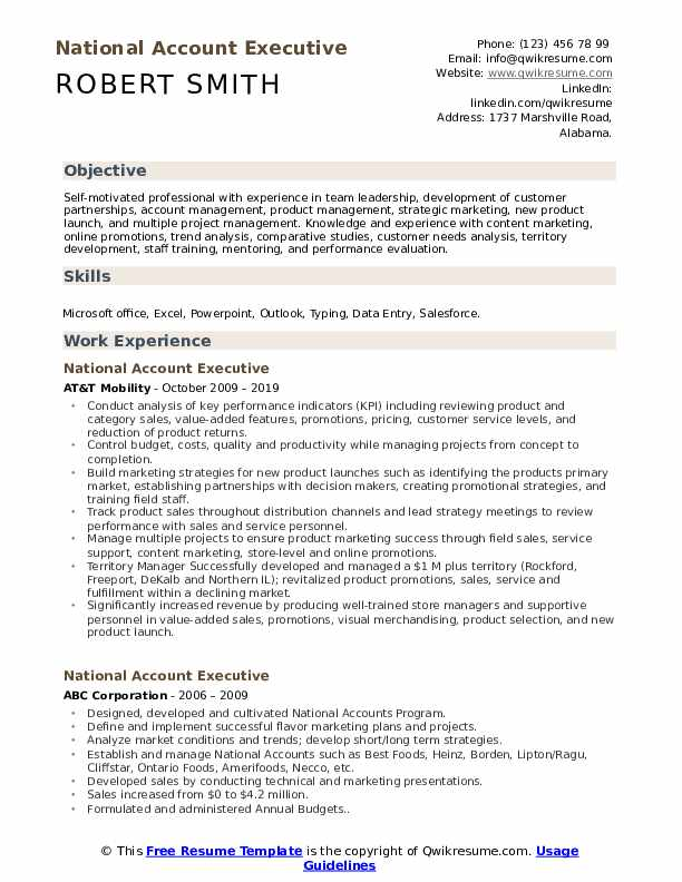 National Account Executive Resume Example