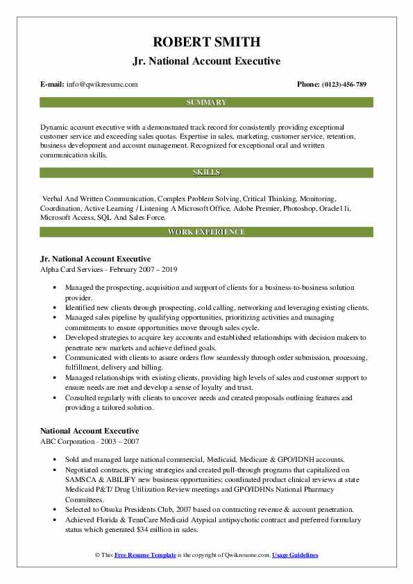 Jr. National Account Executive Resume Model