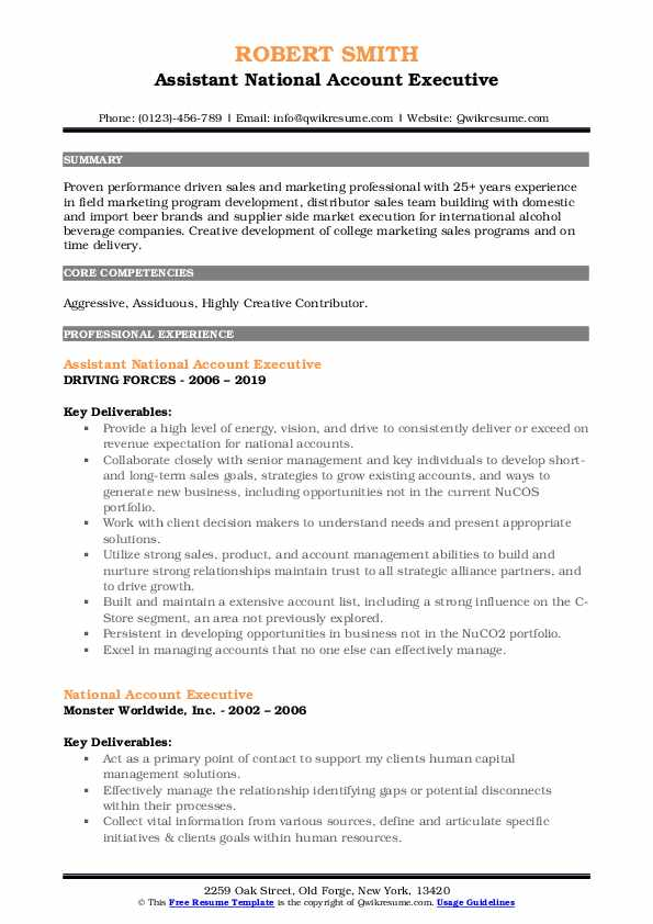 Assistant National Account Executive Resume Format