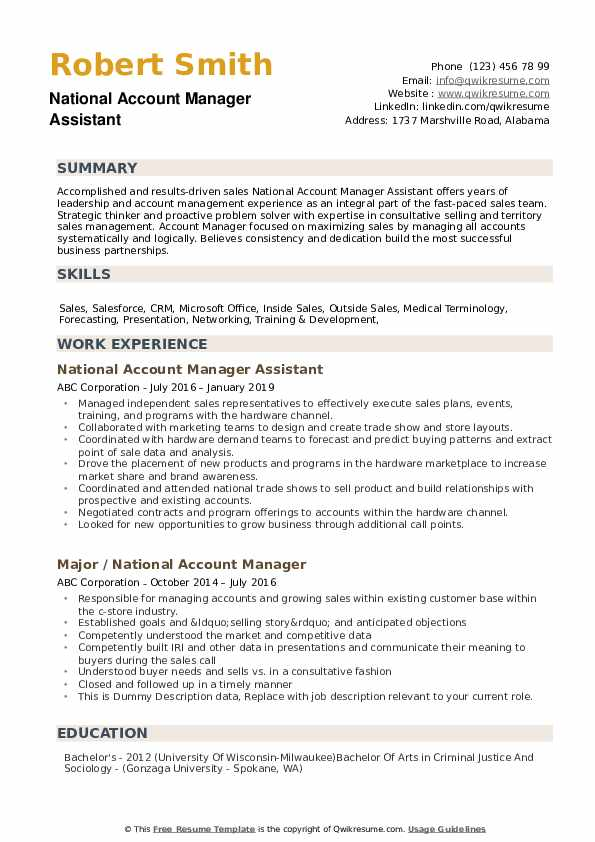 National Account Manager Resume example