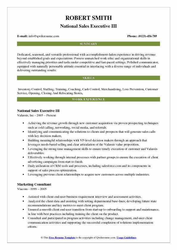 National Sales Executive III Resume Example