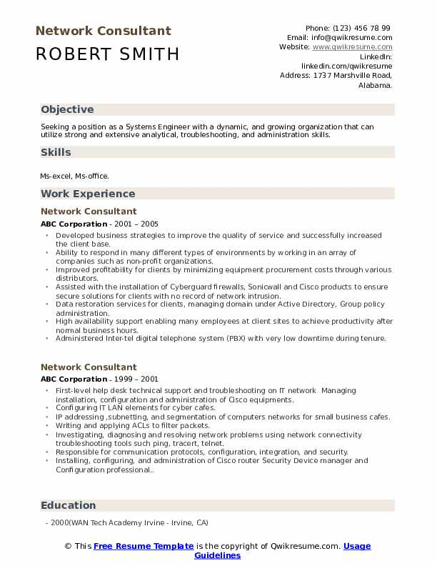 Network Consultant Resume example