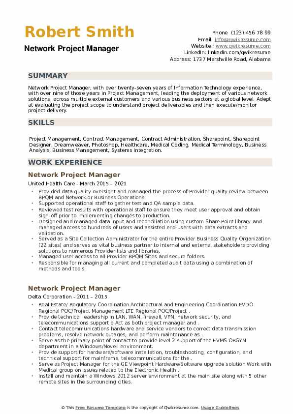 Network Project Manager Resume example
