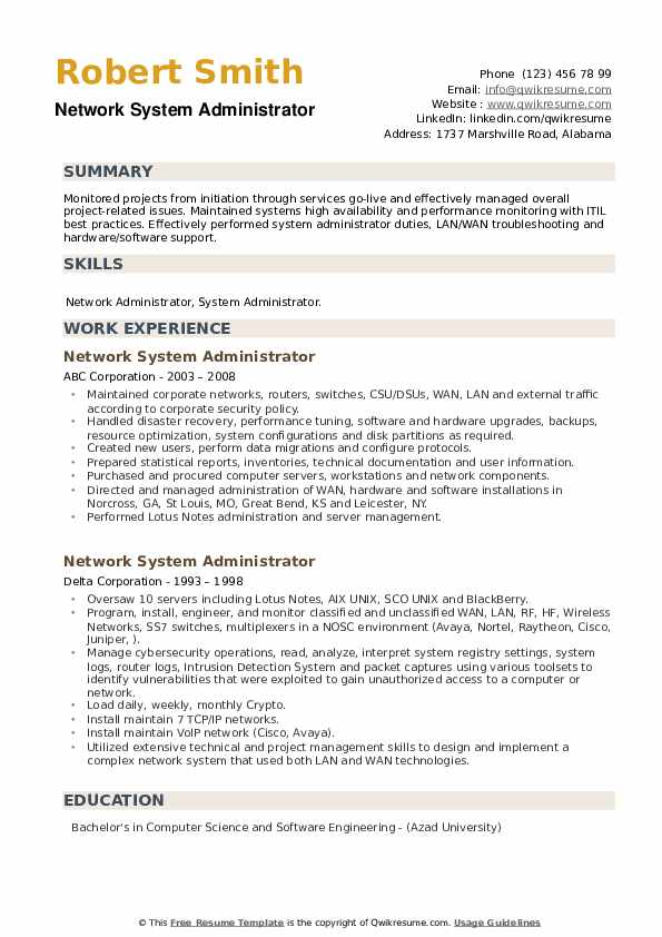 Network System Administrator Resume example