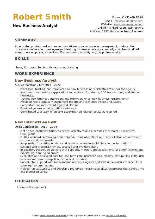 New Business Analyst Resume example