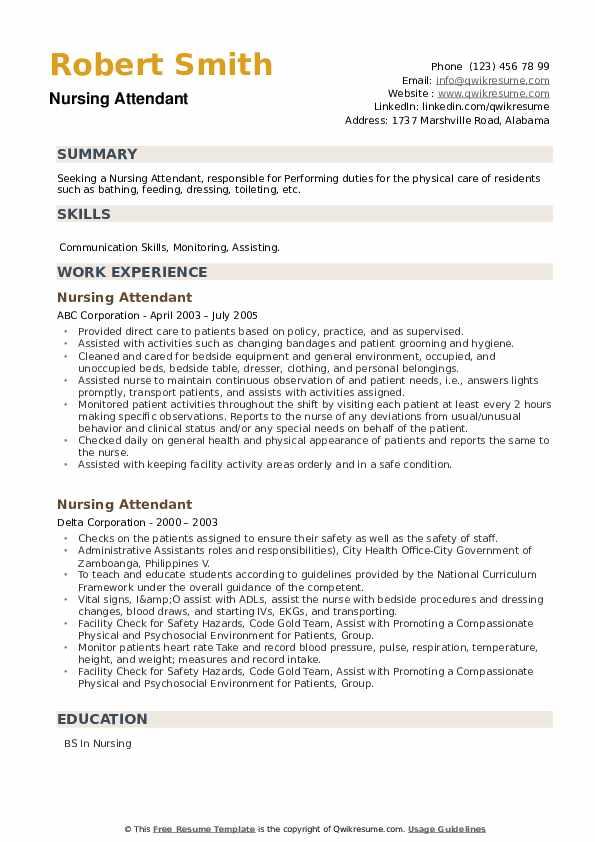 Nursing Attendant Resume example