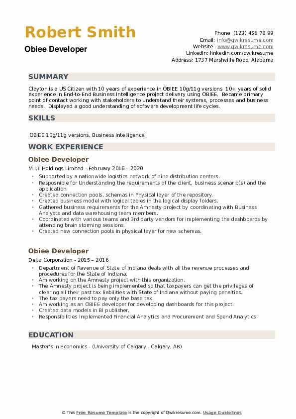 OBIEE Developer Resume example