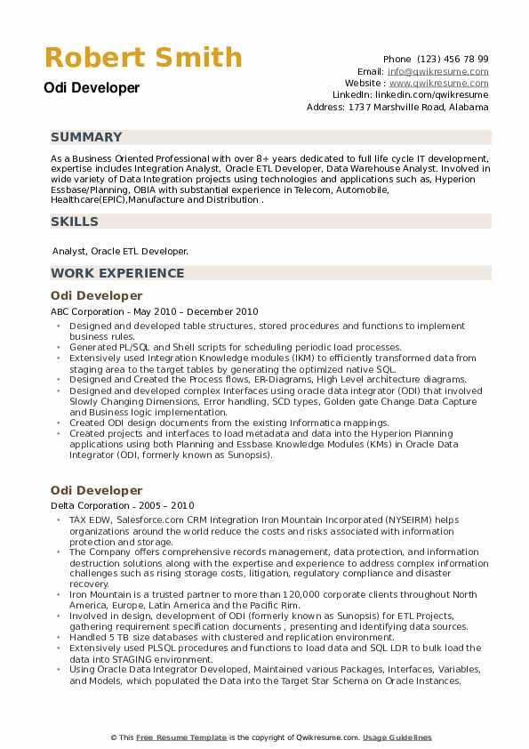 ODI Developer Resume example