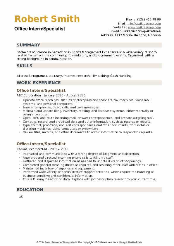 Office Intern Resume example