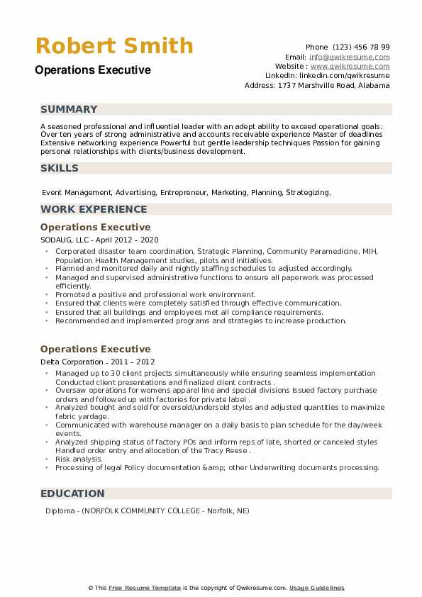 Operations Executive Resume example