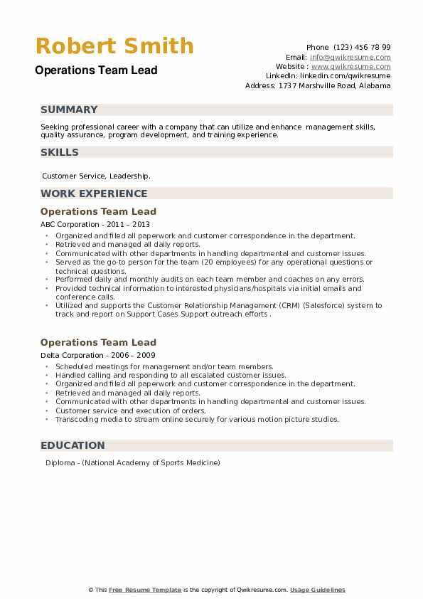 Operations Team Lead Resume example