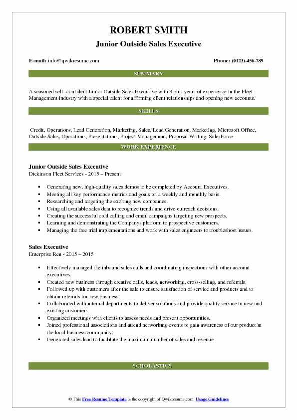 Junior Outside Sales Executive Resume Template