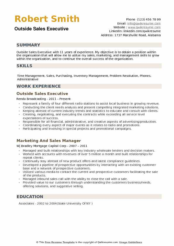 Outside Sales Executive Resume example
