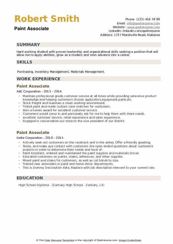 Paint Associate Resume example