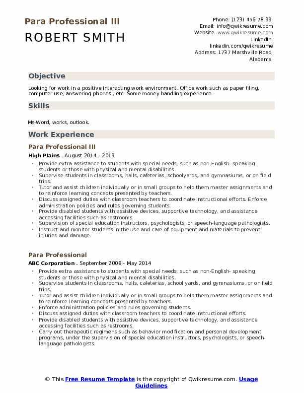 Para Professional III Resume Model
