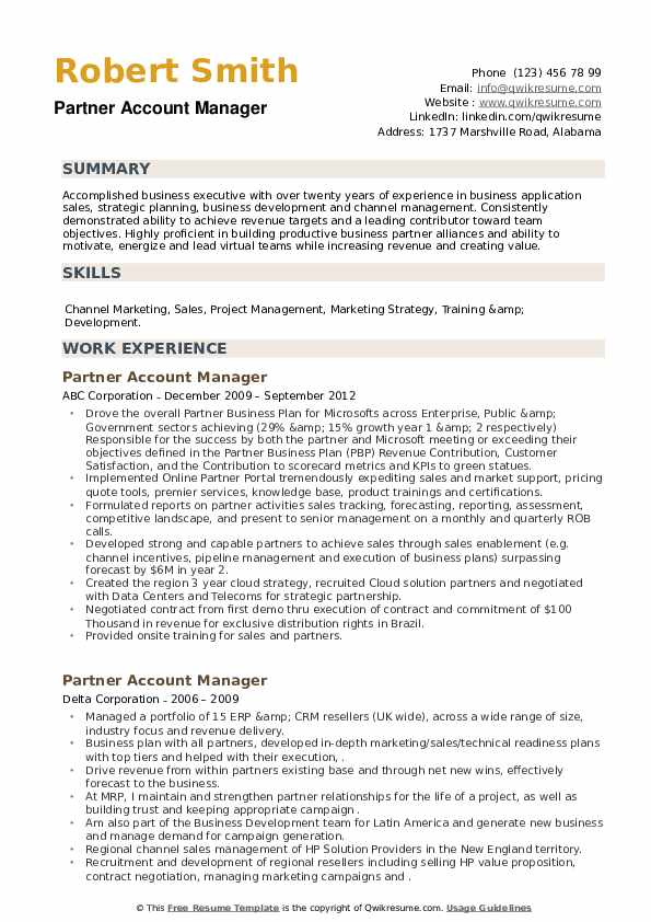 Partner Account Manager Resume example