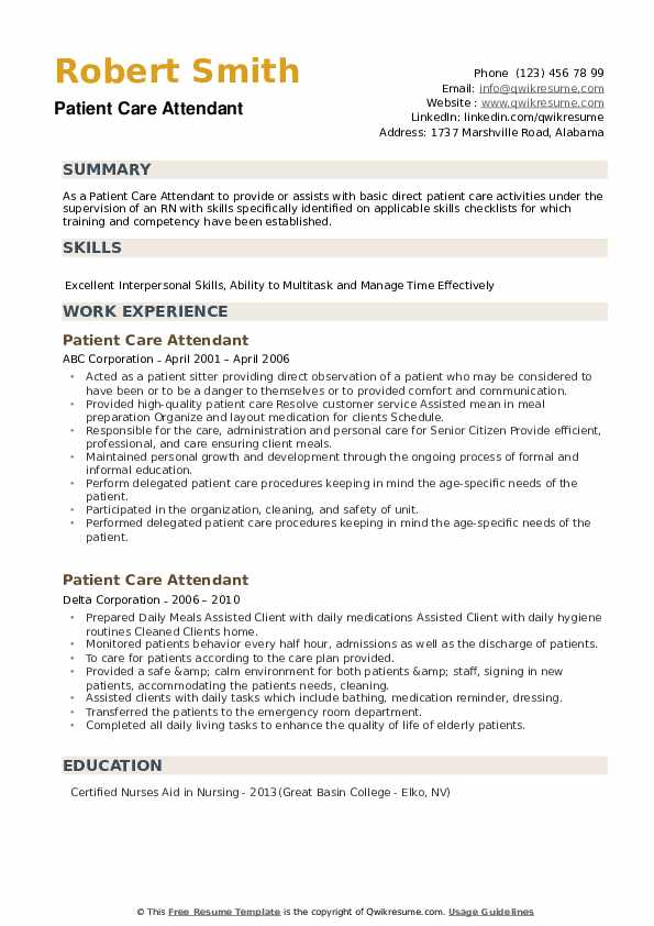 Patient Care Attendant Resume example