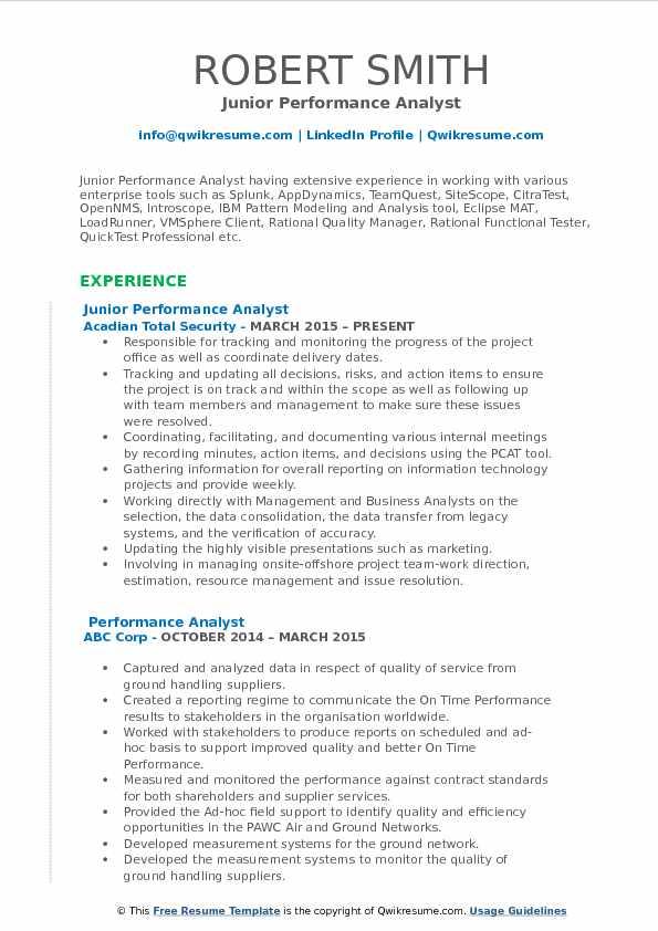 Junior Performance Analyst Resume Format