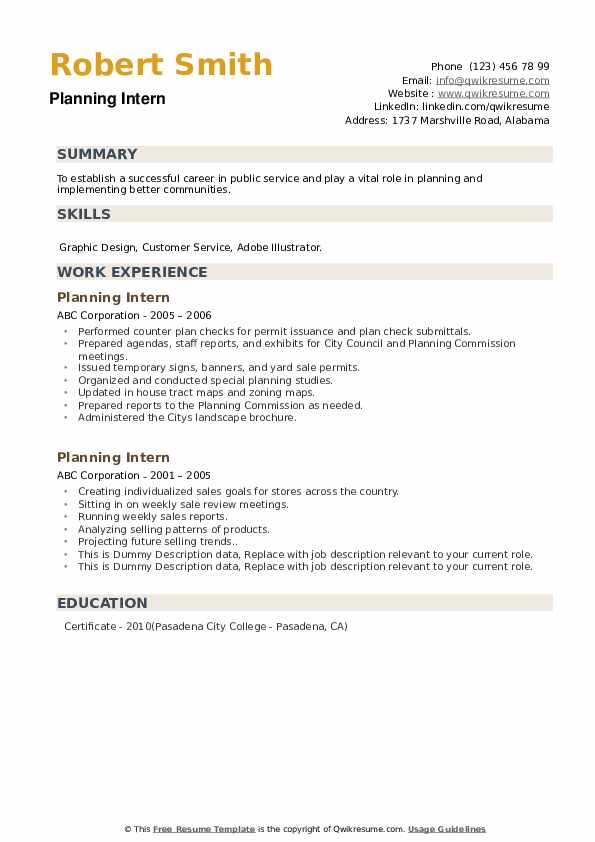 Planning Intern Resume example