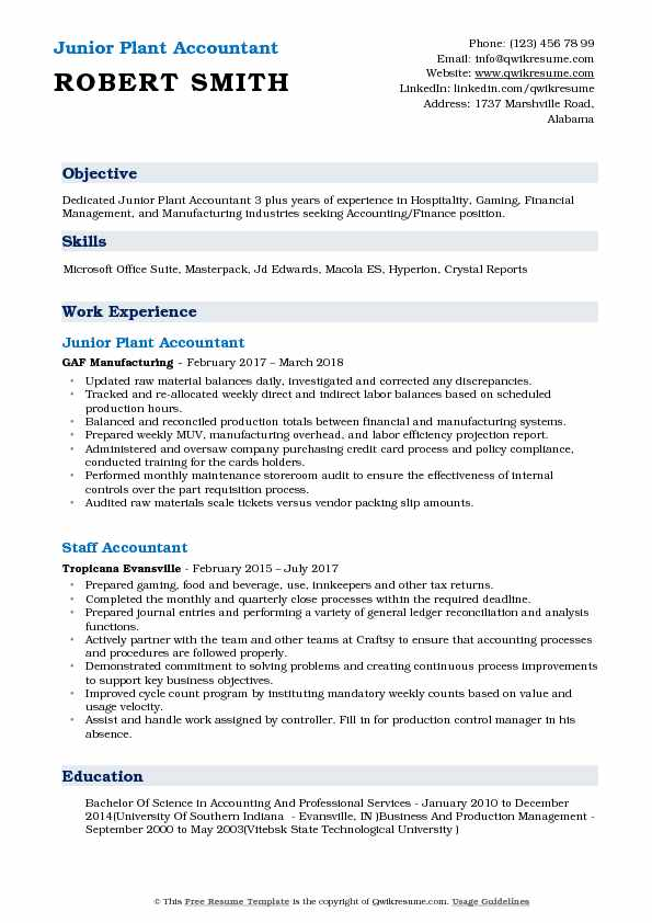 Junior Plant Accountant Resume Format