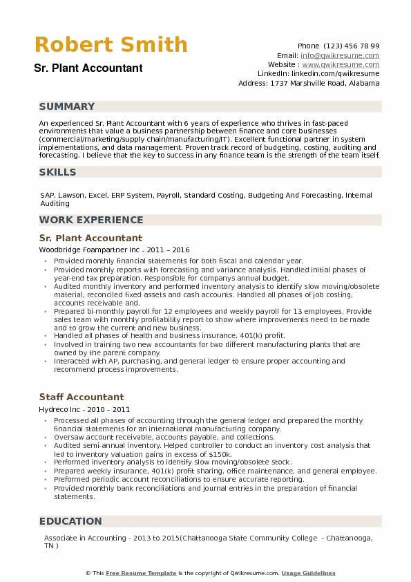 Plant Accountant Resume example