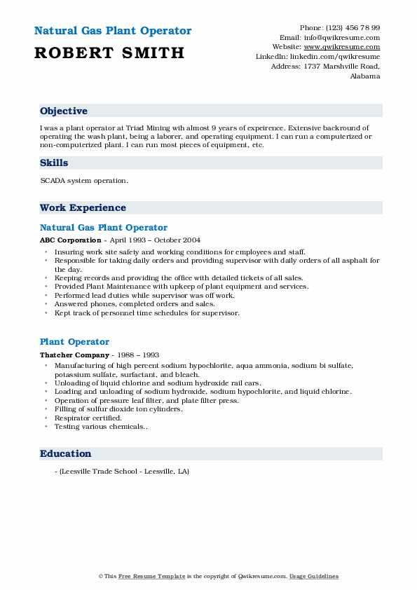 Natural Gas Plant Operator Resume Format