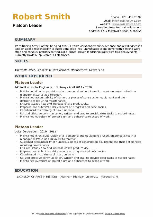 Platoon Leader Resume example