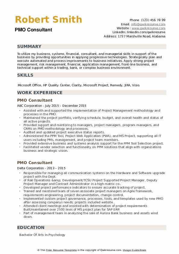 PMO Consultant Resume example