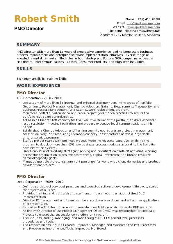 PMO Director Resume example