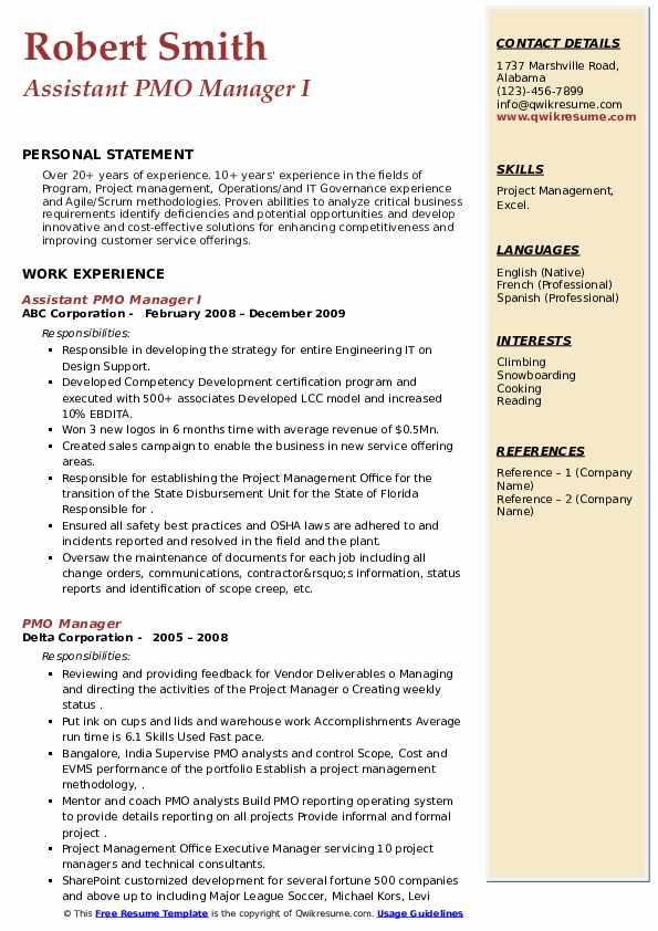 PMO Manager Resume example