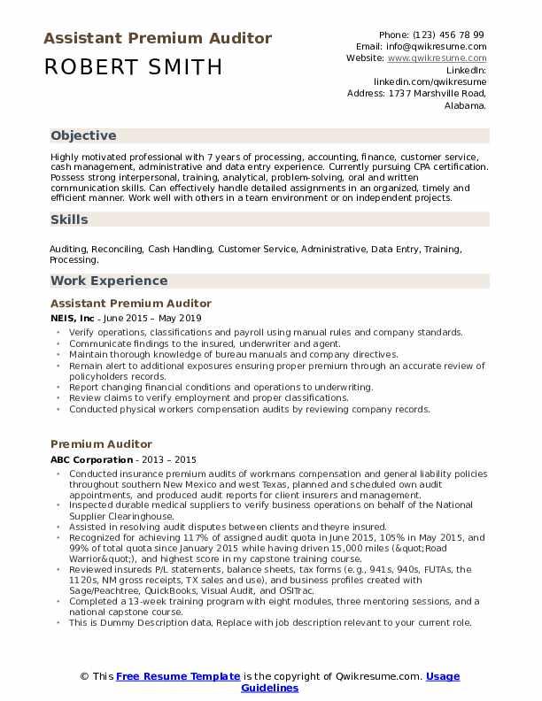 Premium Auditor Resume example