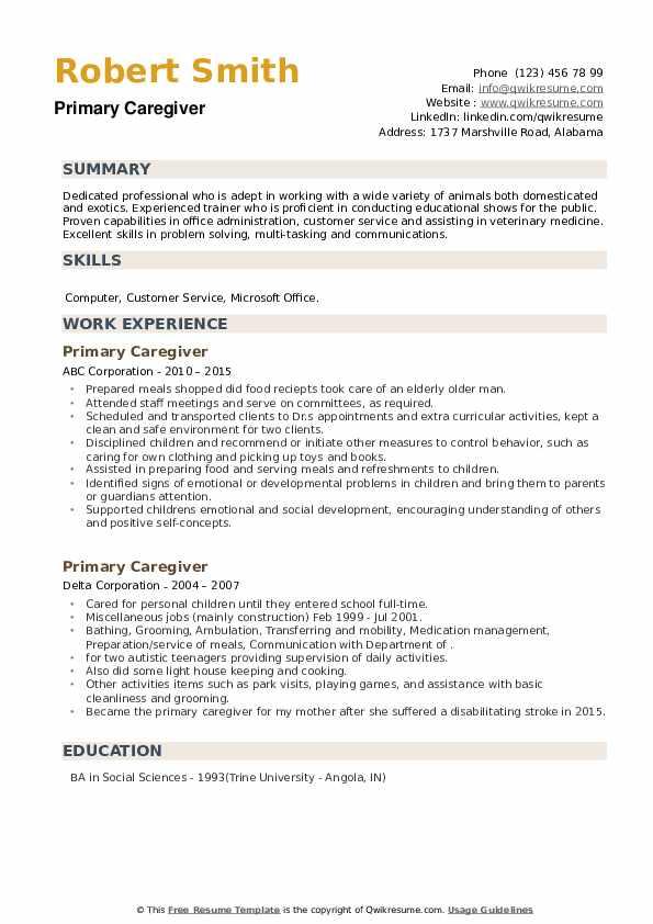 Primary Caregiver Resume example