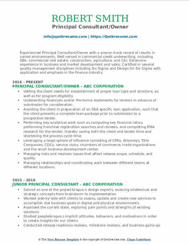 Principal Consultant/Owner Resume Format