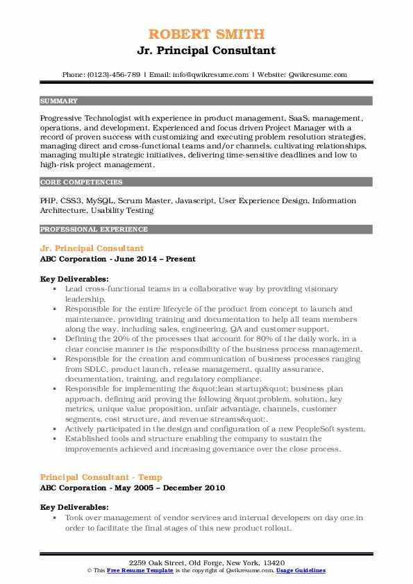 Jr. Principal Consultant Resume Sample