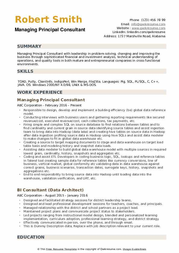 Principal Consultant Resume example