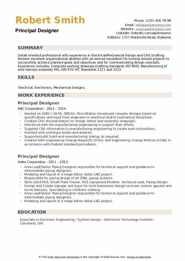 Principal Designer Resume example